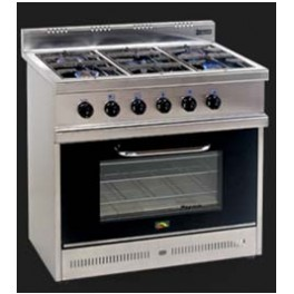 Cocina linea regina 6 hornallas gv servicios for Cocina 6 hornallas